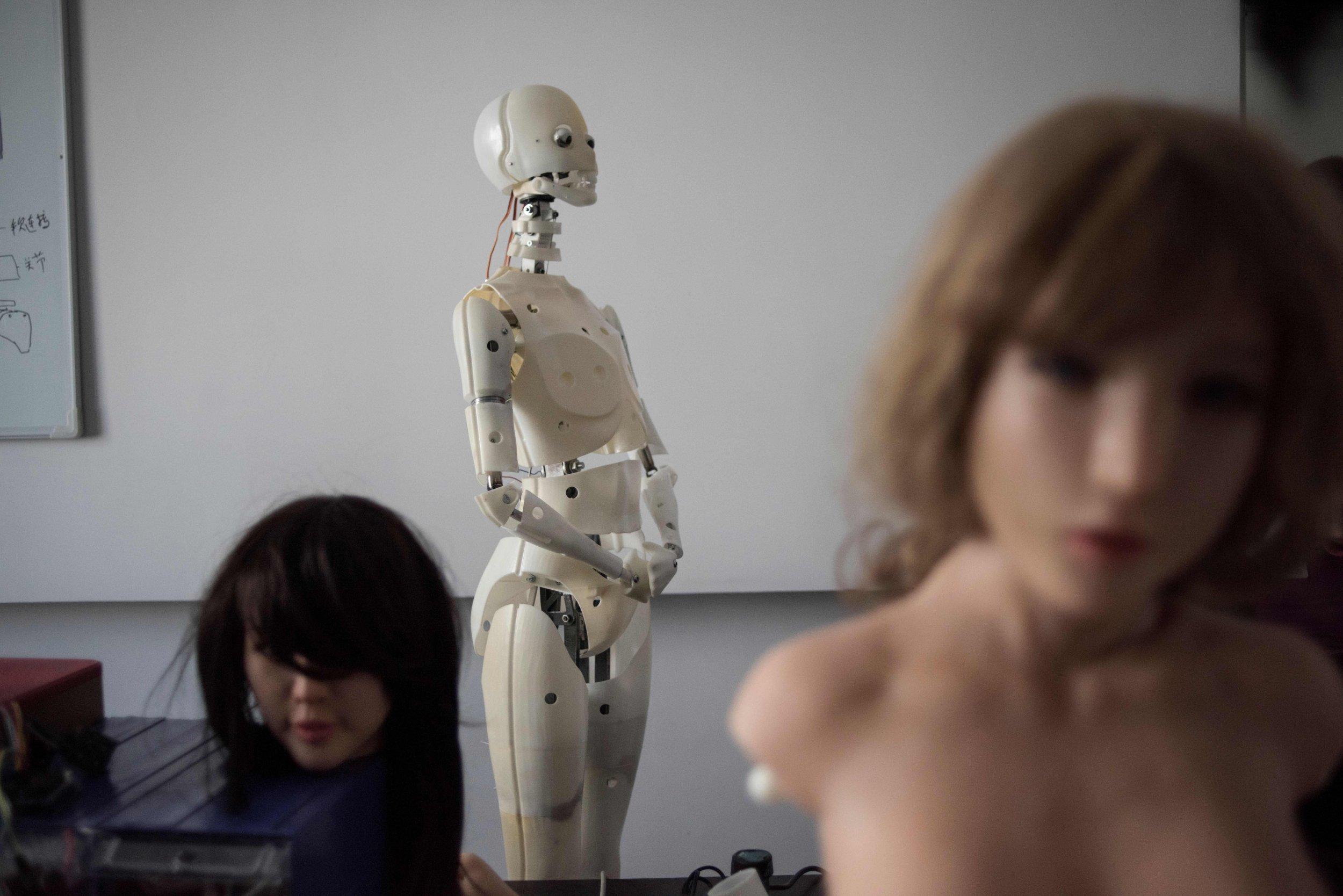 6_5_Sex Robots