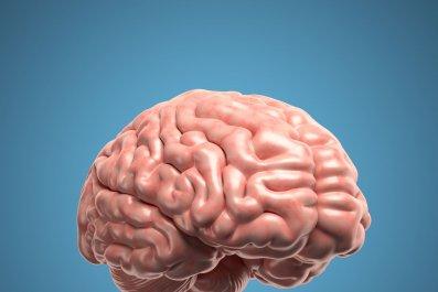 brain-alzheimers-stock