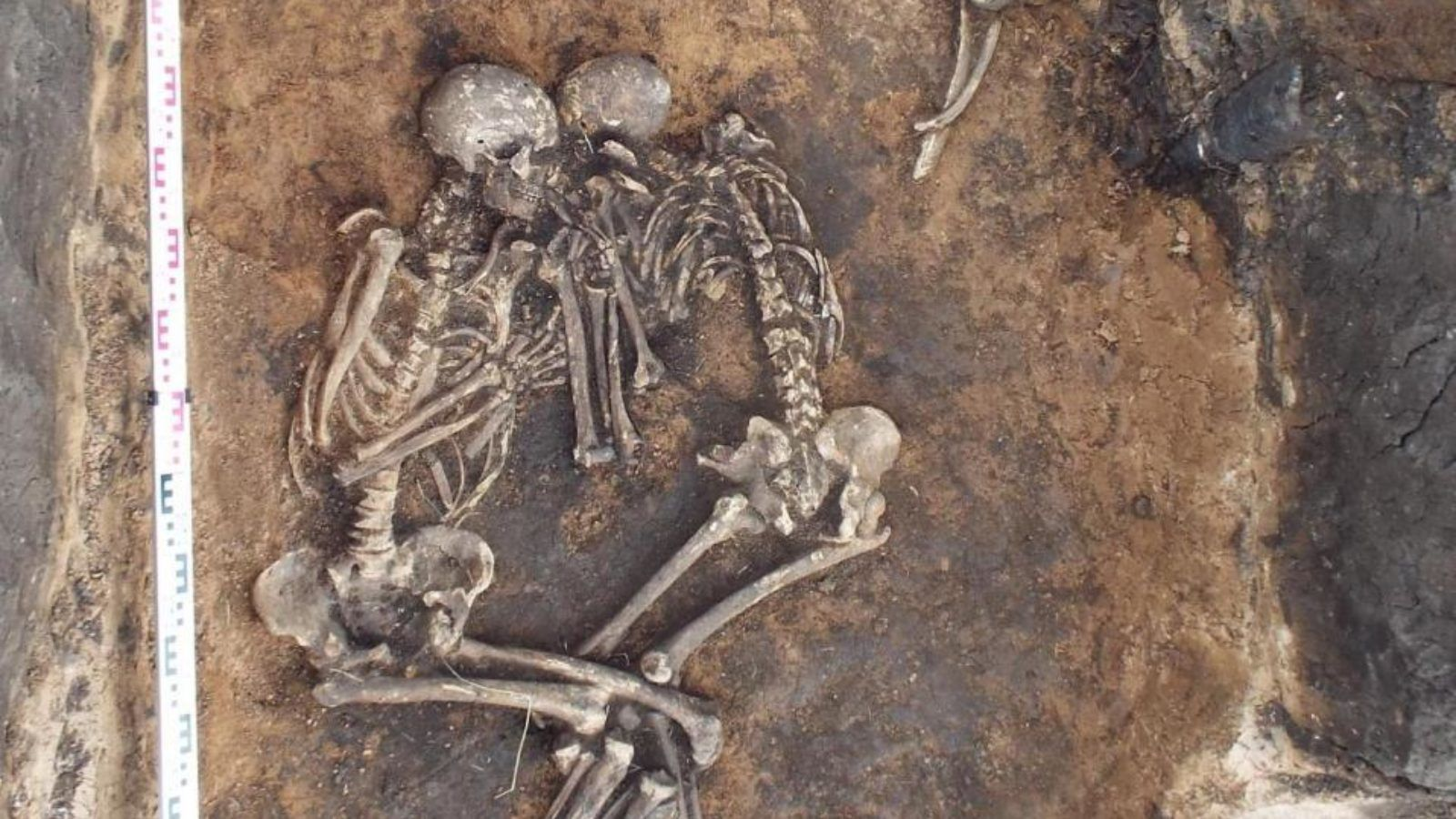 Ancestor of Bubonic plague found in 3,800 year-old teeth