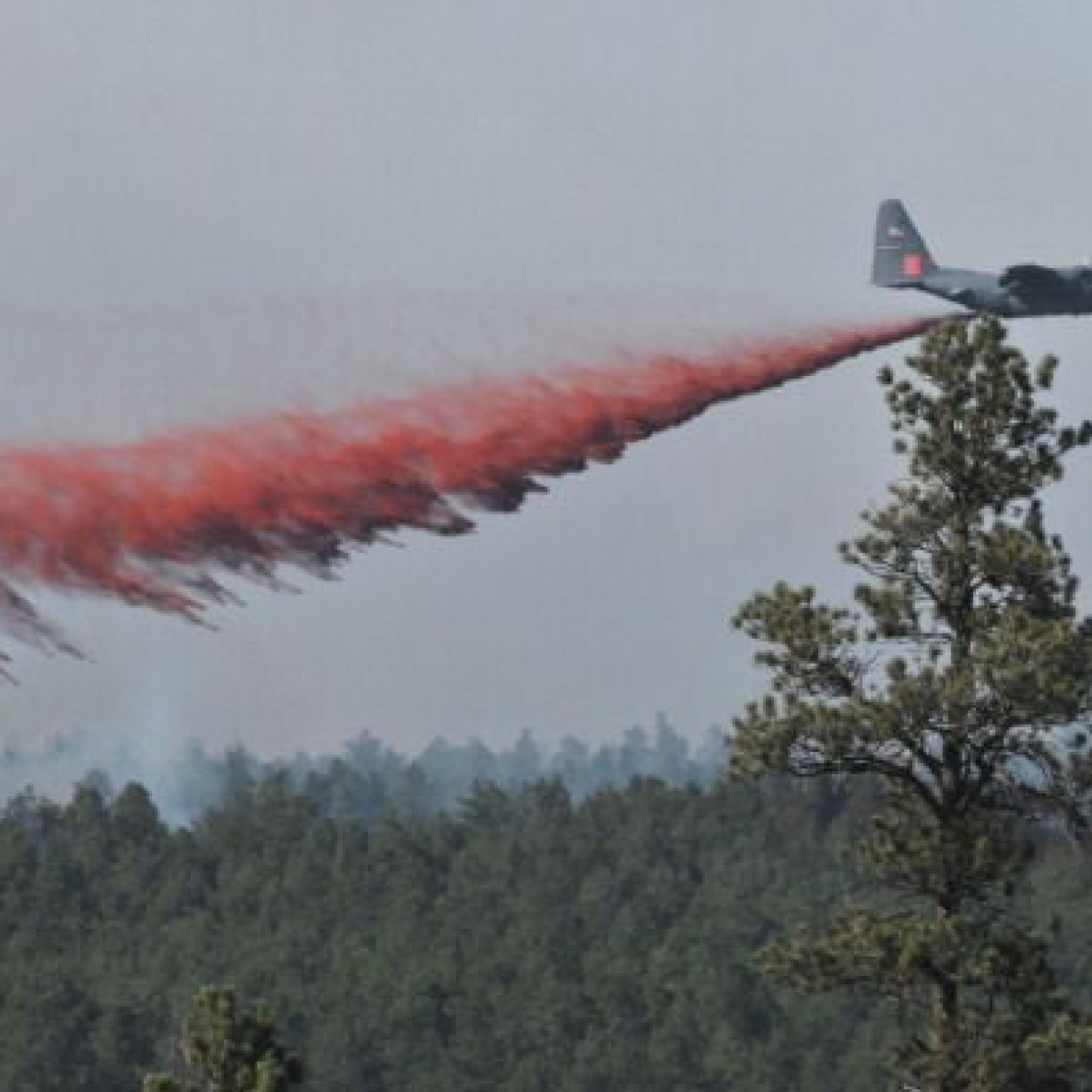 Colorado Wildfire Nearly Doubles in Size, New 416 Fire Evacuations