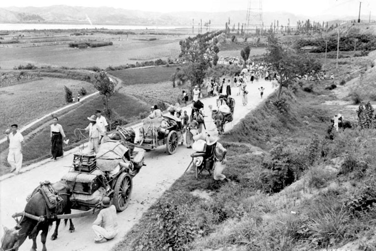 1950 refugees