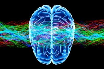 0612-brain