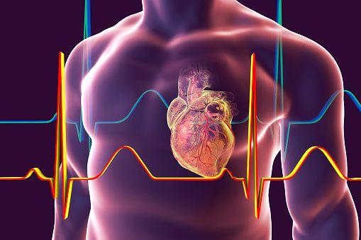 0614-Heart