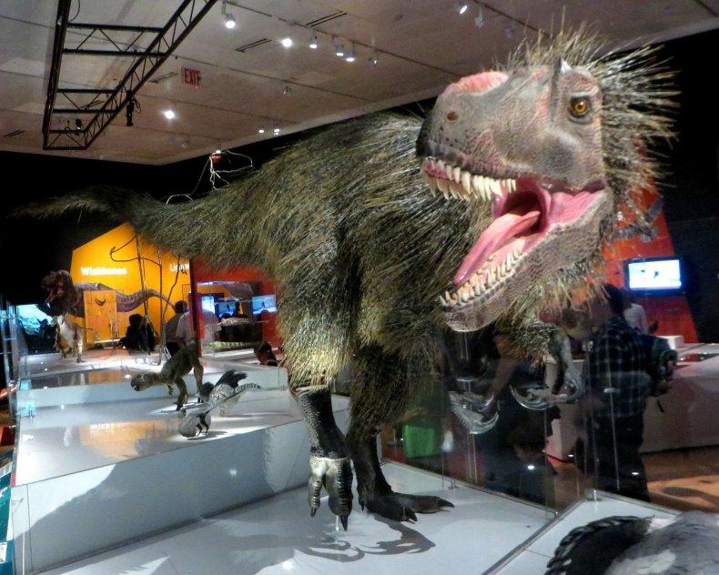yutyrannus-huali-t-rex-jurassic-park-tyrannosaurus