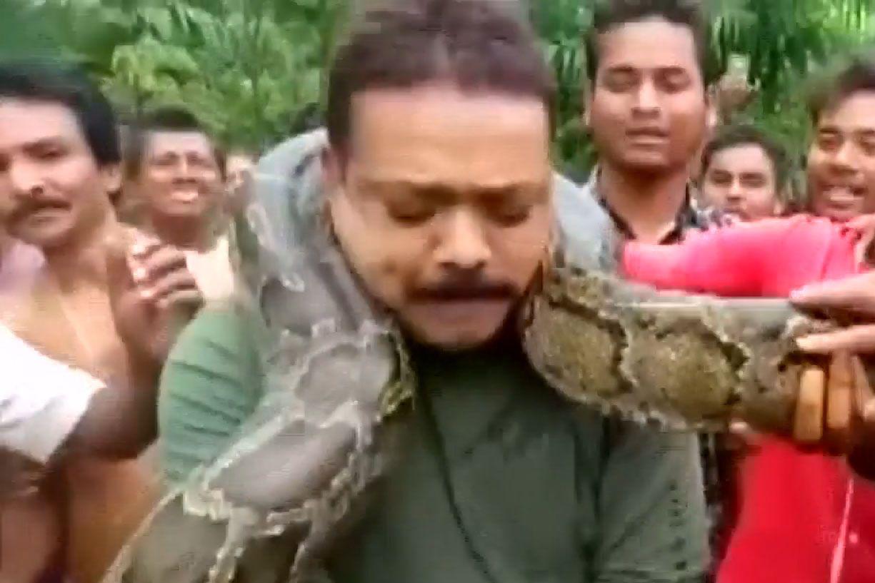Snake Strangles Ranger
