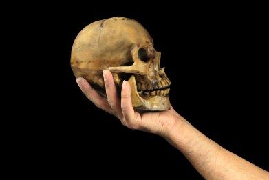 6_27_Skull