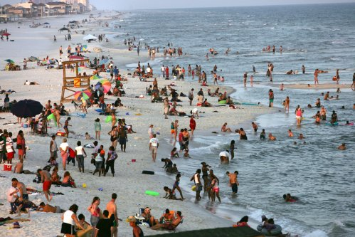 What Are Sea Lice? Beachgoers Are 'Losing Their Minds' After